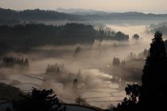 朝日が射す棚田の雲海