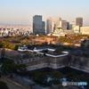 大阪城と高層ビル02