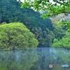 新緑の室生湖03