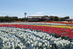 春の彩 1