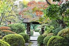 犬山の庭園にて。