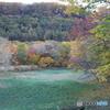 水上高原ホテル200 紅葉