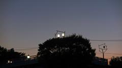 公園の灯り