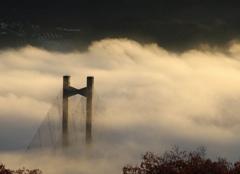 橋を覆う朝霧