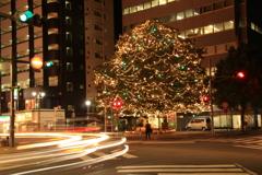 街角クリスマスツリー