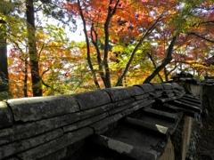 古い土塀と紅葉