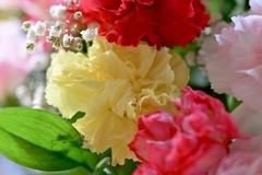 綺麗なお花で今年のお別れを