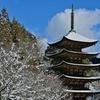 雪化粧した五重塔