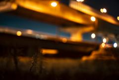 草 高速道路