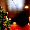 天井のクリスマス