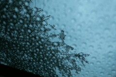 雨が空から降れば