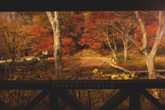 autumn theater