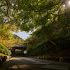 南禅寺の最勝院(高徳庵)。