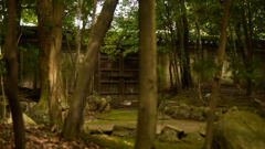 平安神宮神苑。
