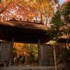 祇王寺(ぎおうじ)の門。