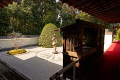 雲龍院の庭園。