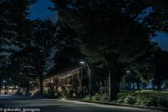駒沢公園西口 夜の入口