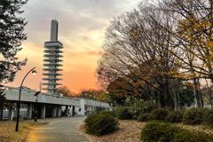 駒沢公園 夕景