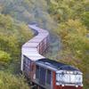 秋の貨物列車(玉ねぎを運ぶ)