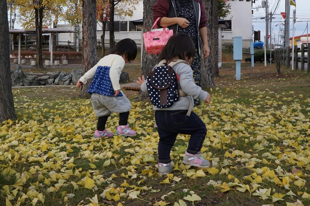 落ち葉の季節2