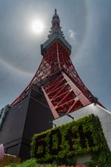 東京タワーの虹の輪(ハロ現象?) 作例3
