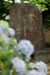 アジサイの碑