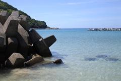 日本海とテトラポット