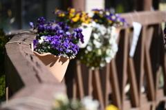 柵の花飾り