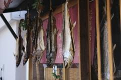 鮭トバ食べたい…