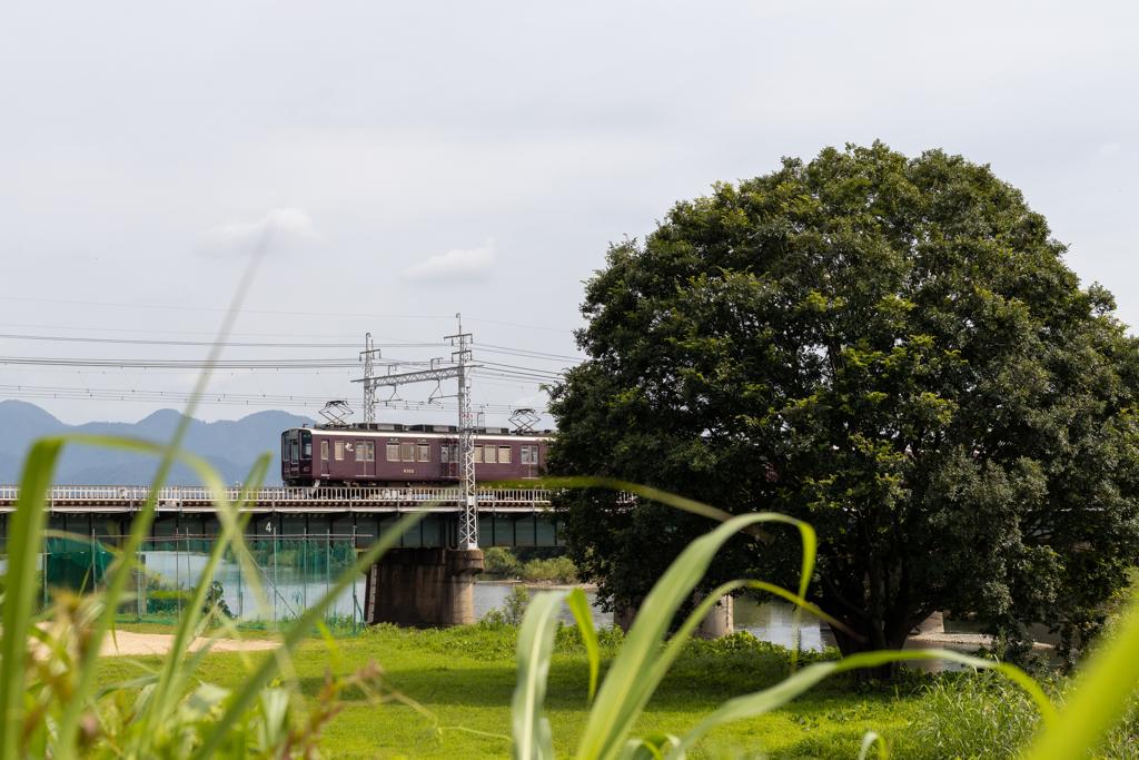 阪急電車、夏を行く