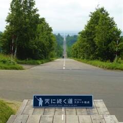 直線 28.1km