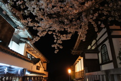 二寧坂の夜桜