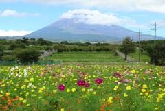 富士山麓にて