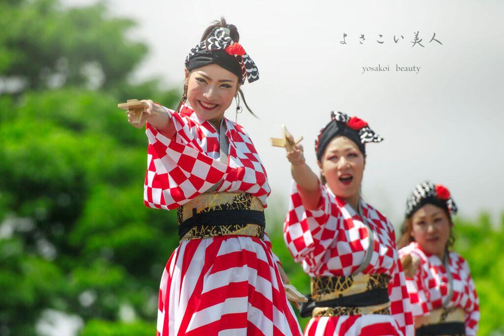 yosakoi beauty