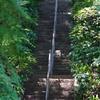 浄土への階段?