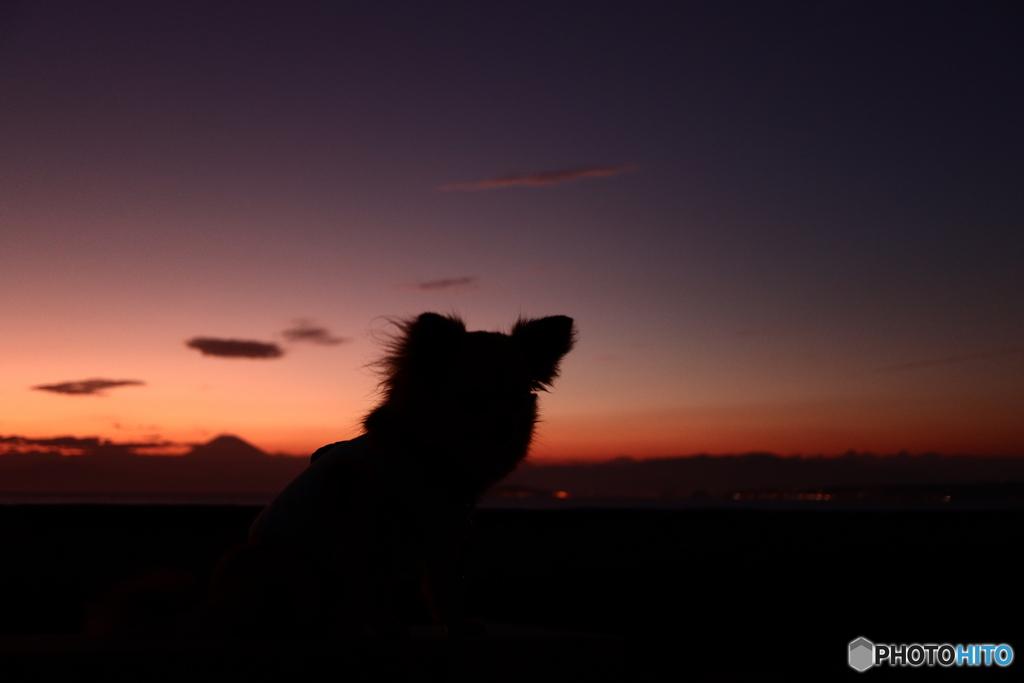 夕染めの富士山を眺める