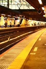 通勤時間を楽しむ 大船駅夕景