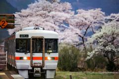 桜の見える駅