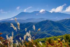 すすきと望む御嶽山
