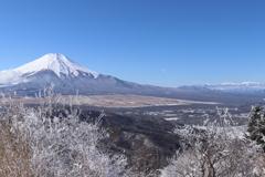 山散歩11 石割山からの富士山