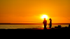 早朝の釣り人