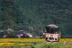 姫新線・佐用町宝蔵寺地区