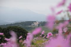 山頂のホテル