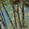 青木湖と雑木林