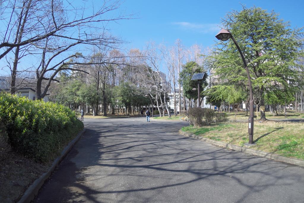 2019_03_02東京スナップ (4)