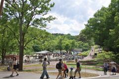 2018春 武蔵丘陵森林公園にて (10)