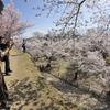 2019春の懐古園で撮る人を撮る (6)