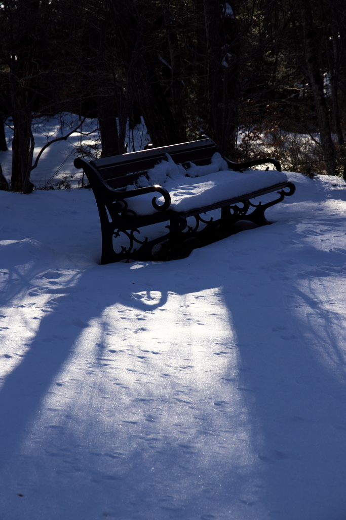雪の積もるベンチ 2019