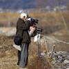 犀川白鳥湖の白鳥を(10)撮る人を撮る