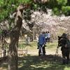 2019春の懐古園で撮る人を撮る (3)